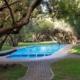 swembad en groen gras