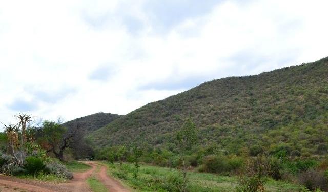Berg en Bos Plaasstaanplekke vir boskaravane.